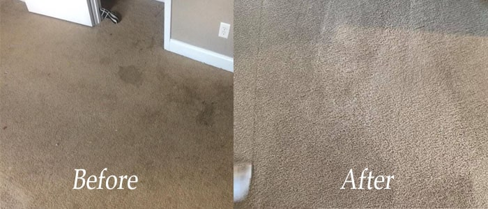 Top 10 Carpet Cleaning Tips and Tricks
